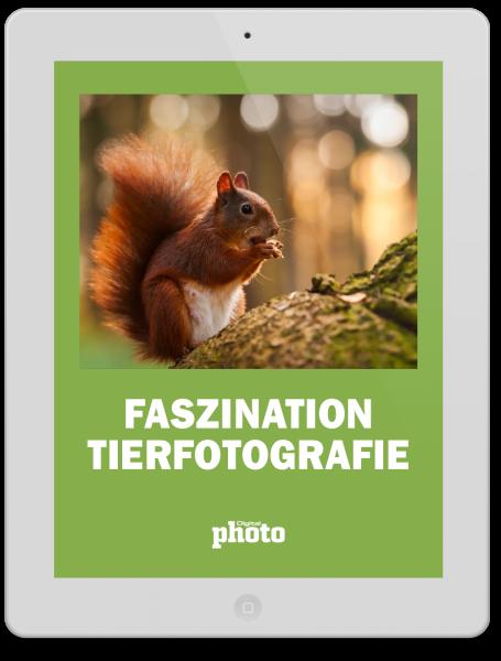 DigitalPhoto Faszination Tierfotografie