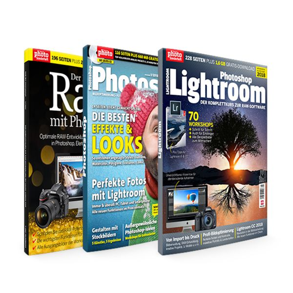 Photoshop, Raw & Lightroom Bundle